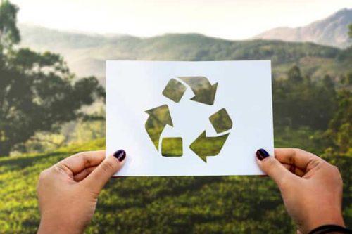 engagements-environnementaux-dmd-paris